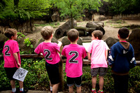 Mulberry Elementary 2nd Grade Zoo Trip 2016-04-28 (9)