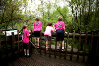 Mulberry Elementary 2nd Grade Zoo Trip 2016-04-28 (5)