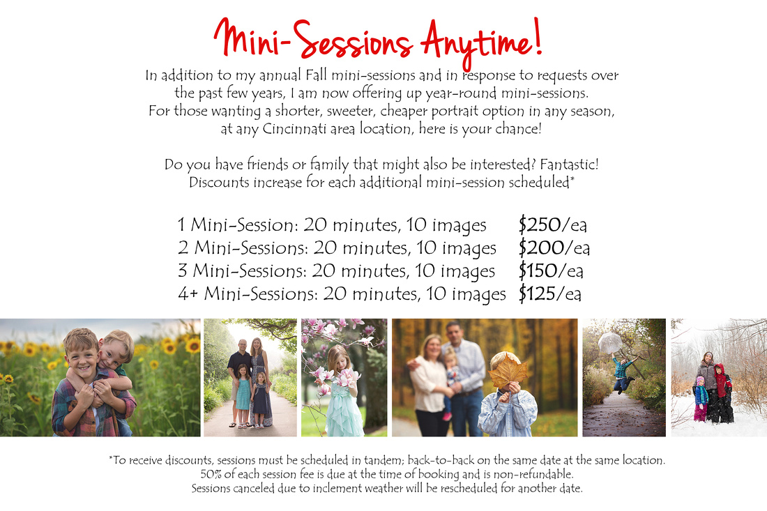 Mini-Sessions Anytime