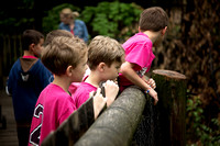 Mulberry Elementary 2nd Grade Zoo Trip 2016-04-28 (7)